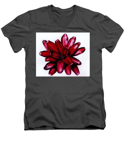 Neoregelia 'christmas Cheer' Men's V-Neck T-Shirt