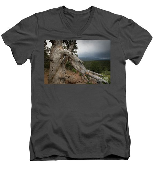 Old Tree On The Mountain Men's V-Neck T-Shirt