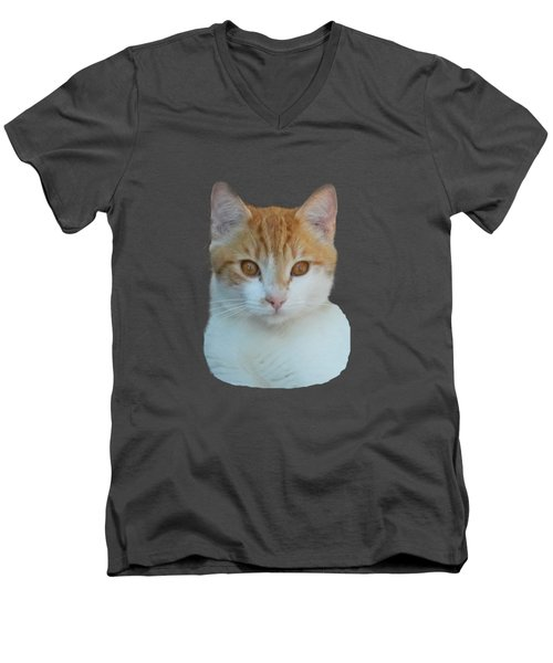 Orange And White Cat Men's V-Neck T-Shirt by Pamela Walton