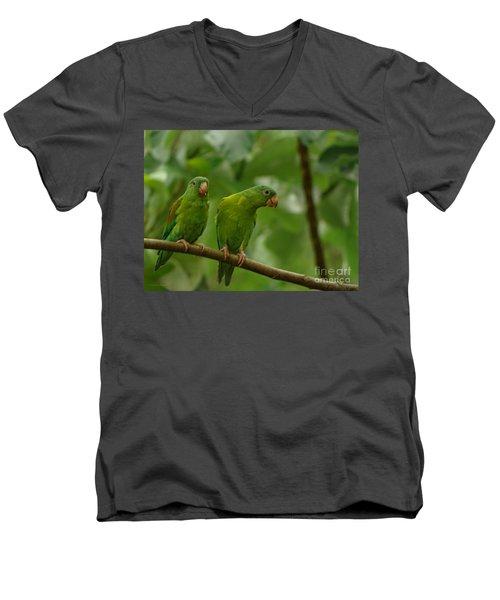 Orange -chinned Parakeets  Men's V-Neck T-Shirt