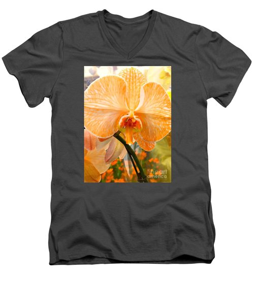 Orange Delight Men's V-Neck T-Shirt