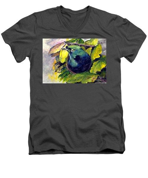 Paradise Bird Men's V-Neck T-Shirt