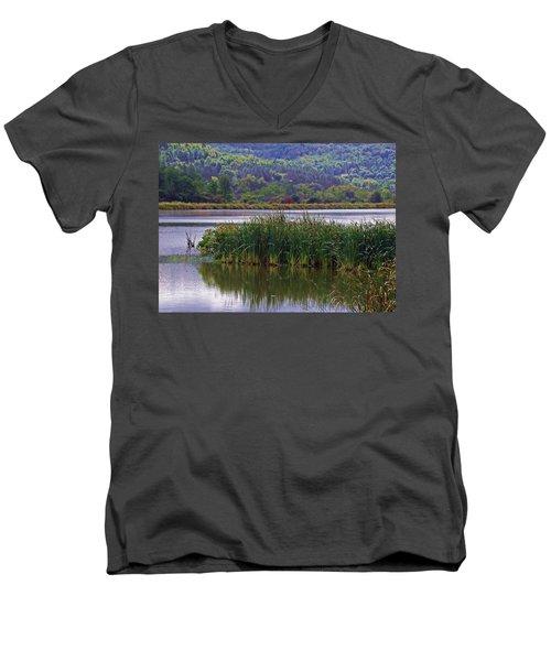 Peace Be Still Men's V-Neck T-Shirt