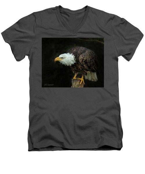 Perched Bald Eagle Men's V-Neck T-Shirt by CR Courson