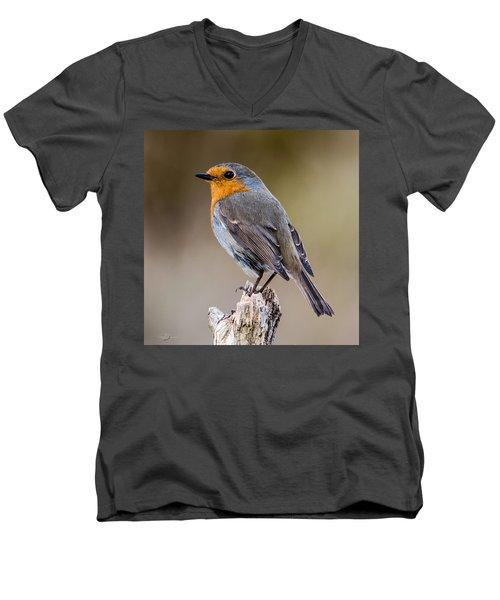 Perching Men's V-Neck T-Shirt by Torbjorn Swenelius