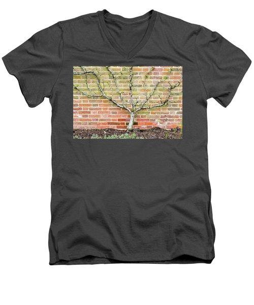 Pier Railings Men's V-Neck T-Shirt