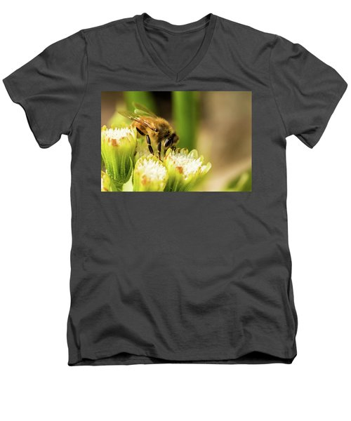 Pollen Collector  Men's V-Neck T-Shirt by Jay Stockhaus