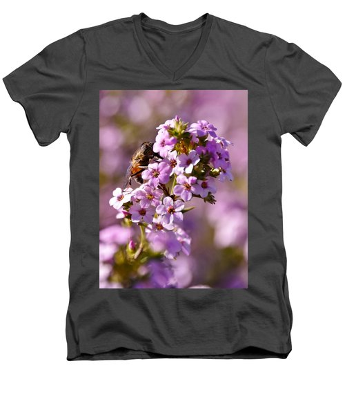 Purple Blossoms And Hoverfly Men's V-Neck T-Shirt by Werner Lehmann