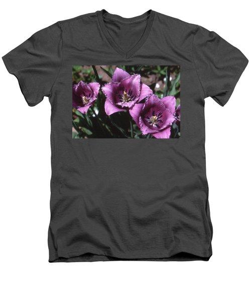 Purple Flowers Two  Men's V-Neck T-Shirt by Lyle Crump