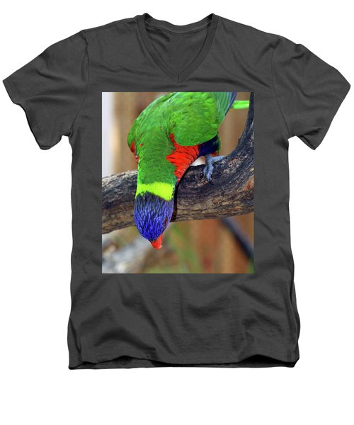 Rainbow Lorikeet Men's V-Neck T-Shirt by Inspirational Photo Creations Audrey Woods