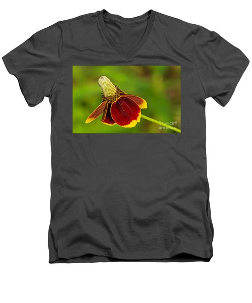 Ratibida Columnifera Men's V-Neck T-Shirt