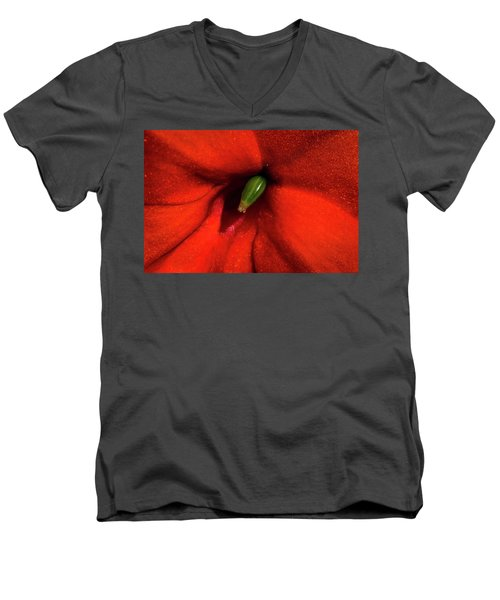 Men's V-Neck T-Shirt featuring the photograph Red And Green by Jay Stockhaus