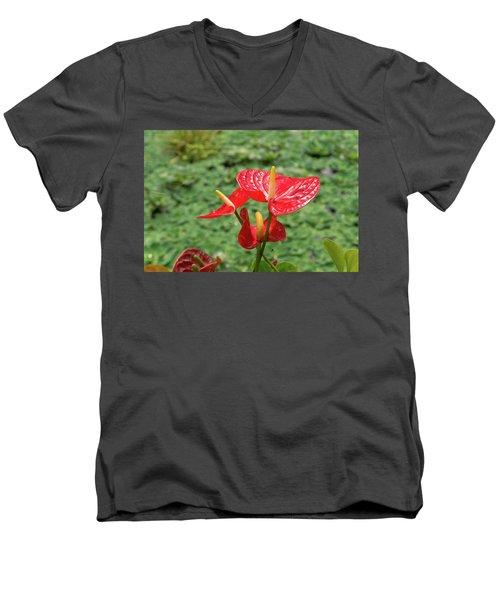 Red Anthurium Flower Men's V-Neck T-Shirt by Hans Engbers