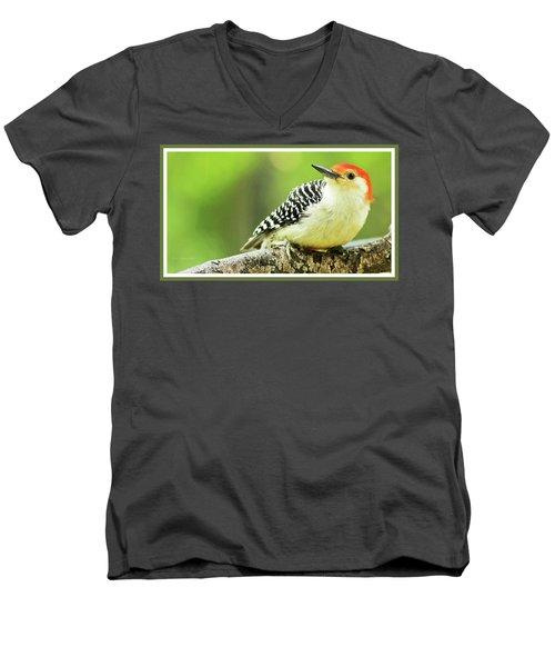 Red Bellied Woodpecker, Male, Animal Portrait Men's V-Neck T-Shirt