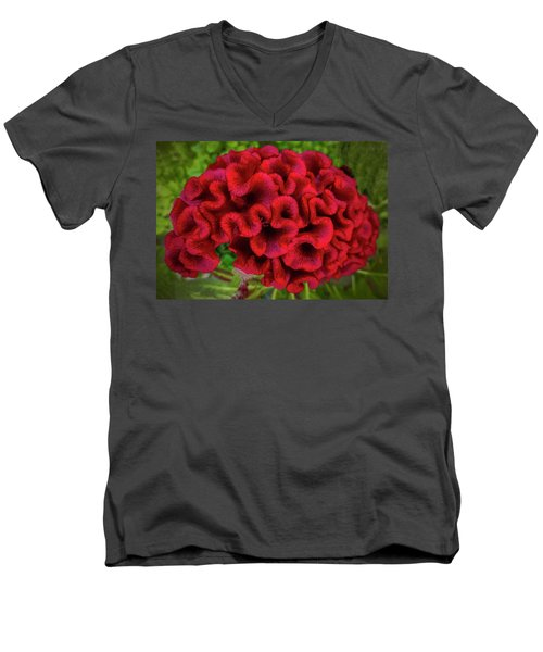 Red Men's V-Neck T-Shirt
