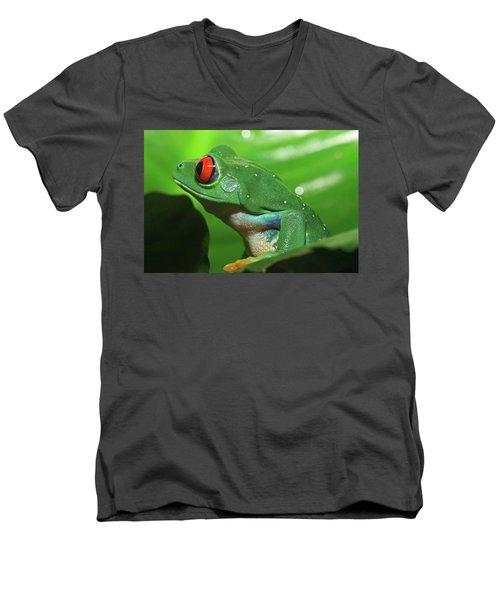 Red Eyed Tree Frog Men's V-Neck T-Shirt