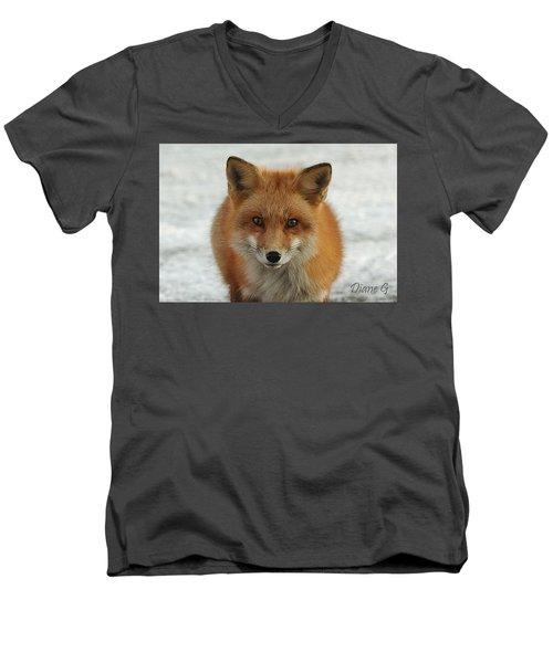 Red Fox Men's V-Neck T-Shirt by Diane Giurco
