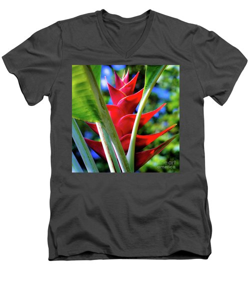 Red Heliconia Hawaii Men's V-Neck T-Shirt