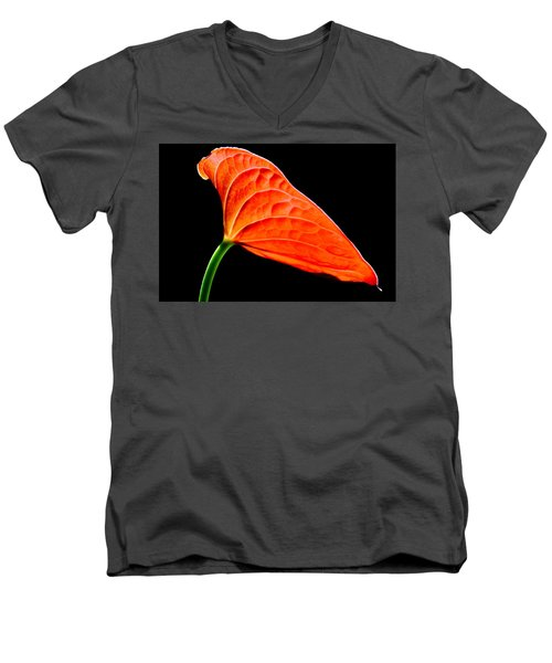 red Lily blossom Men's V-Neck T-Shirt by Werner Lehmann