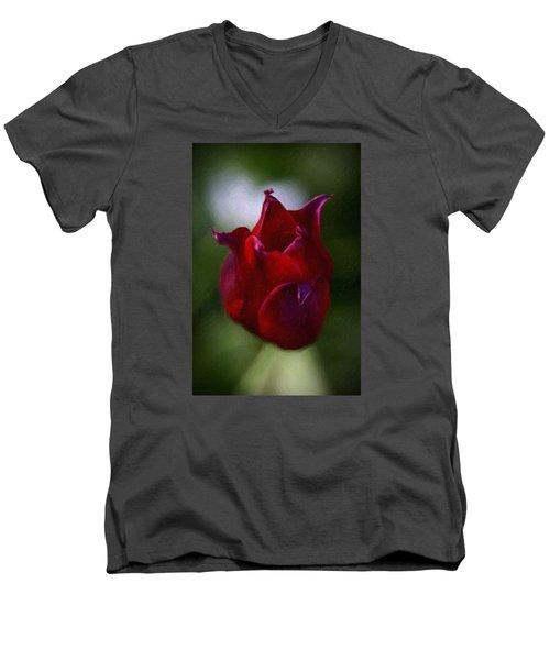 Red Rose Men's V-Neck T-Shirt by Andre Faubert