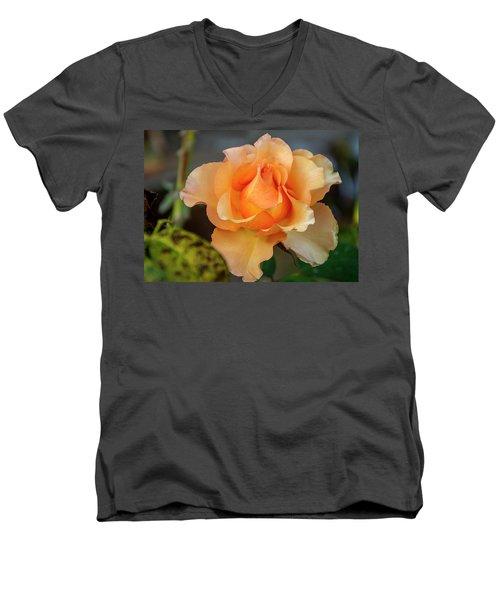 Rose Men's V-Neck T-Shirt