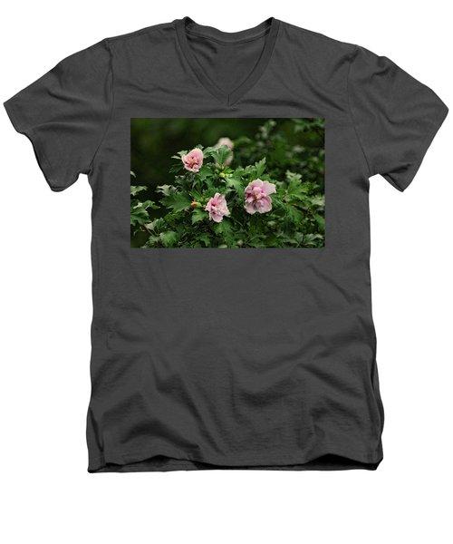 Rose Of Sharon Men's V-Neck T-Shirt