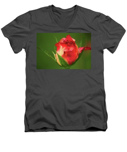 Men's V-Neck T-Shirt featuring the photograph Rosebud by Donna G Smith