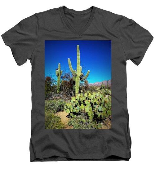 Sabino Canyon Men's V-Neck T-Shirt