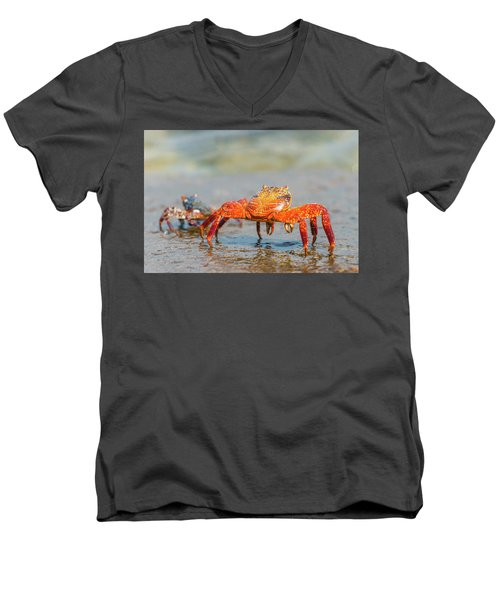 Men's V-Neck T-Shirt featuring the photograph Sally Lightfoot Crab On Galapagos Islands by Marek Poplawski