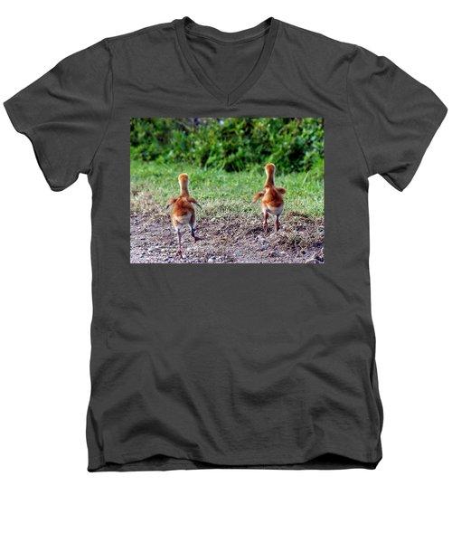 Sandhill Crane Chicks 000 Men's V-Neck T-Shirt by Chris Mercer