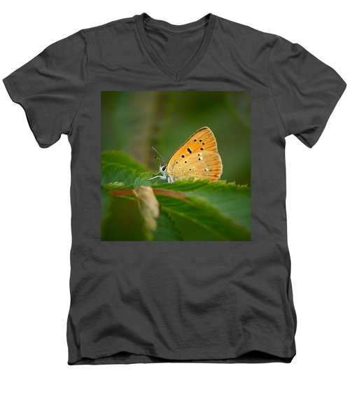Men's V-Neck T-Shirt featuring the photograph Scarce Copper by Jouko Lehto