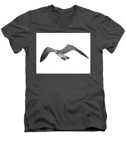 Sea Gull Men's V-Neck T-Shirt