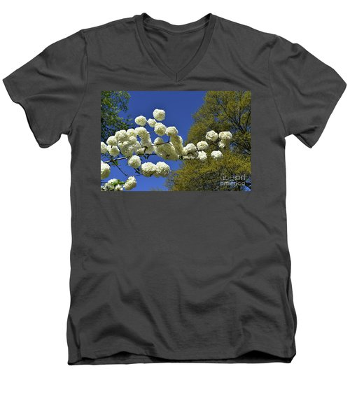 Men's V-Neck T-Shirt featuring the photograph Snowballs by Skip Willits