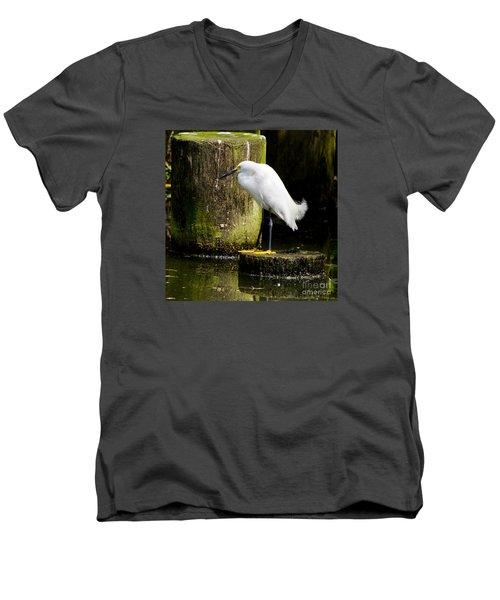 Snowy Egret Men's V-Neck T-Shirt