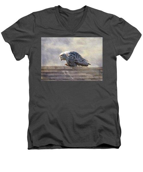 Snowy Owl  Men's V-Neck T-Shirt