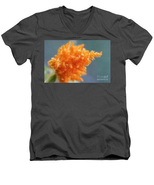 Soft Textures Men's V-Neck T-Shirt