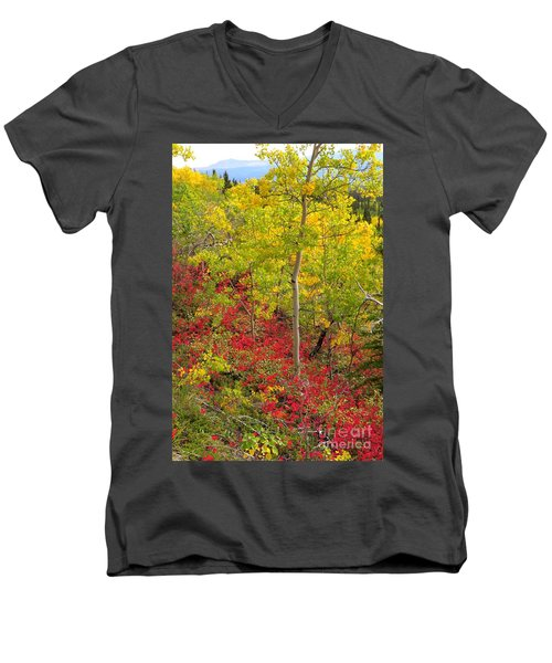 Splash Of Autumn Men's V-Neck T-Shirt