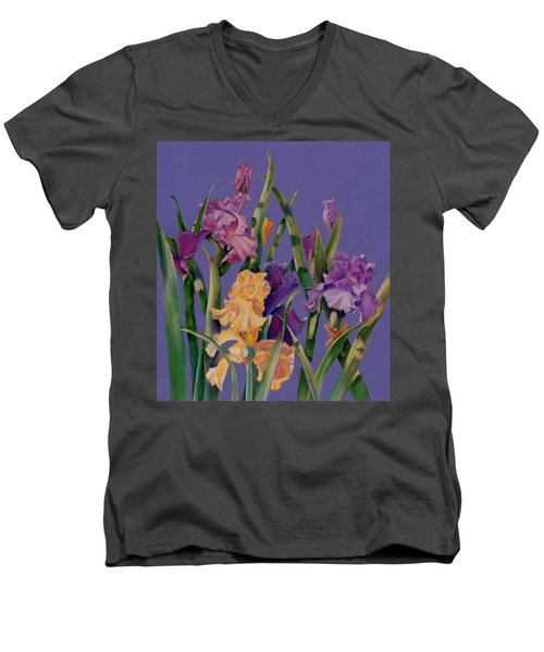 Spring Recital Men's V-Neck T-Shirt