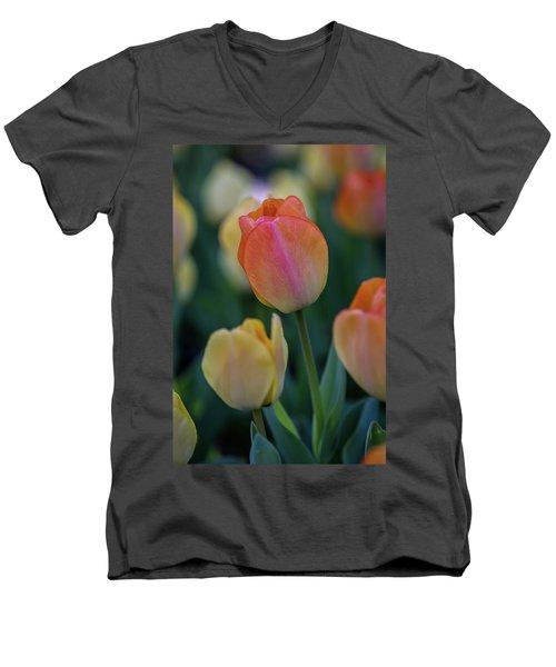 Spring Tulip Men's V-Neck T-Shirt
