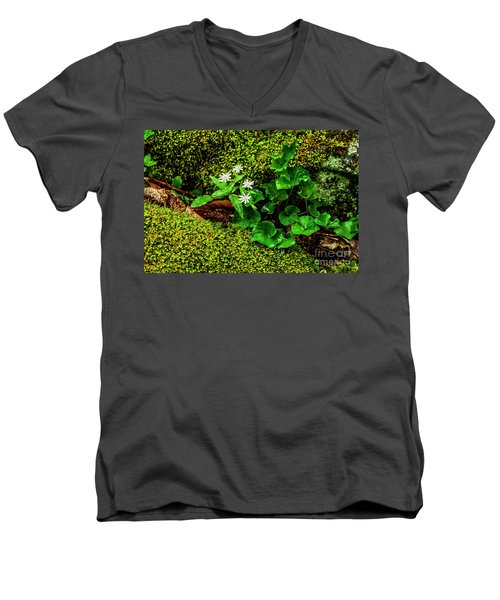 Star Chickweed Mossy Rock Men's V-Neck T-Shirt