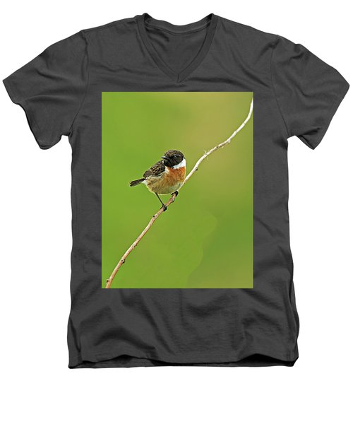 Men's V-Neck T-Shirt featuring the photograph Stonechat by Paul Scoullar