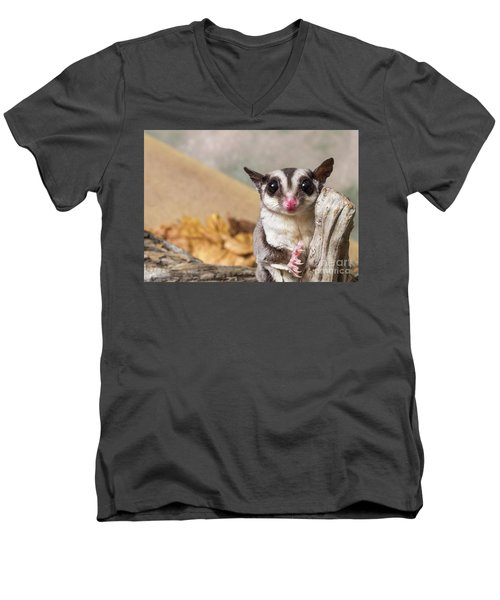Sugar Glider  Men's V-Neck T-Shirt