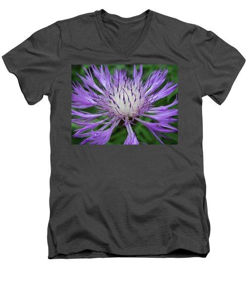 Summer Blooms Men's V-Neck T-Shirt by Rebecca Overton