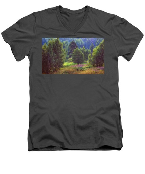 Men's V-Neck T-Shirt featuring the photograph Summer Time by Vladimir Kholostykh