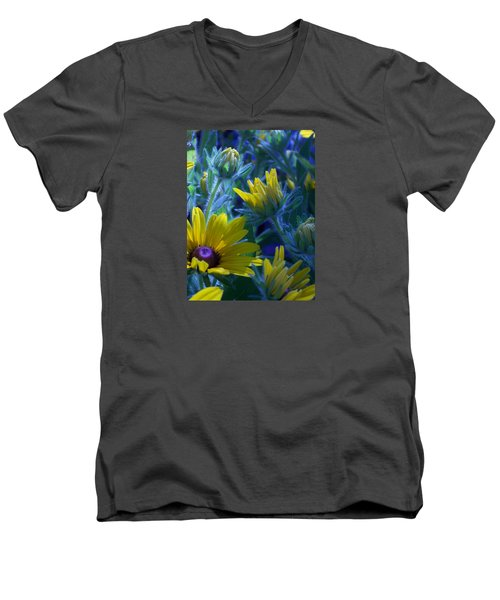 Sun Glory Series Men's V-Neck T-Shirt by Marika Evanson
