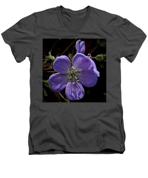 Sundial Men's V-Neck T-Shirt by Tim Good