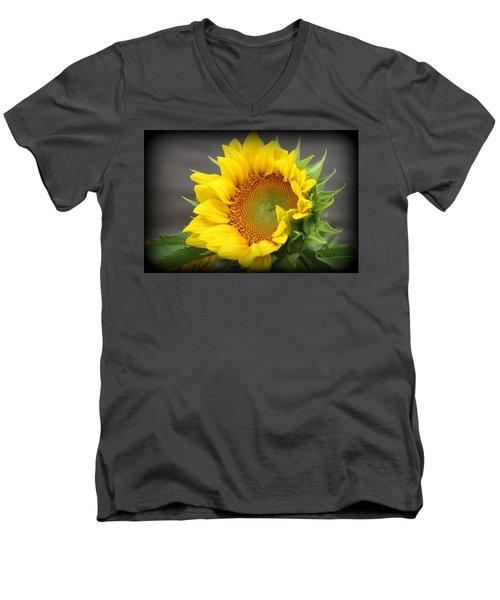 Sunflower Beauty Men's V-Neck T-Shirt