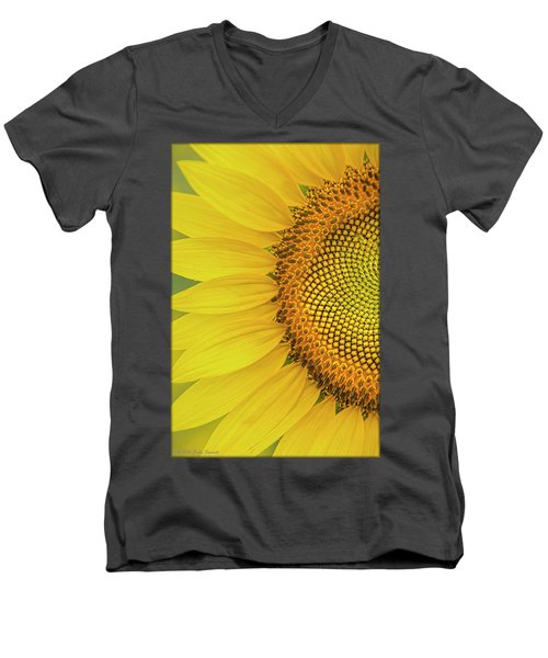 Sunflower Petals Men's V-Neck T-Shirt