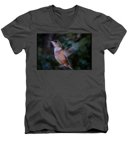 Tan Hummingbird Men's V-Neck T-Shirt