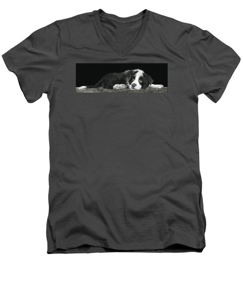 Tell Me More About Sheep Men's V-Neck T-Shirt